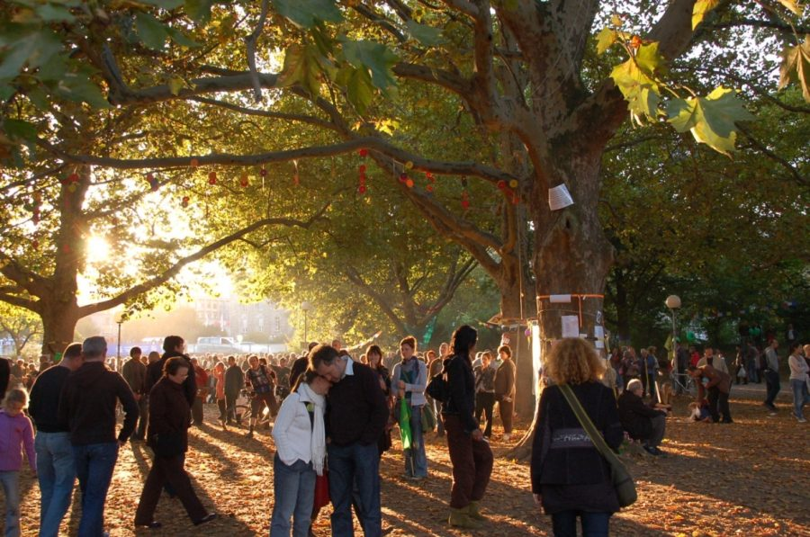 schlossgarten-trees-1-e1497053053853